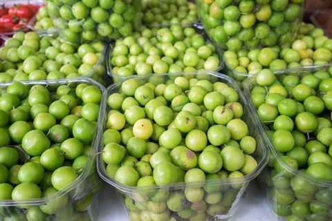 Cherry Plums for Sale