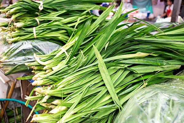 Pandanus Leaves at Market