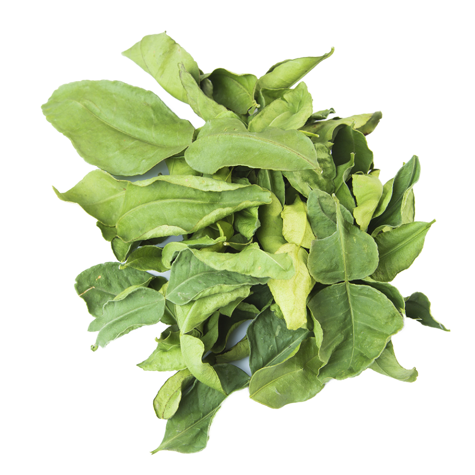Get Burma Spice gourmet whole kaffir lime leaves, imported from Thailand, dried and shipped fresh to your door.