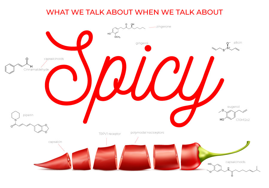 Why do people like spicy food?